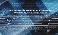 Can You Deduct Your S Corporation Losses?
